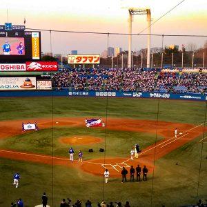 神宮で野球を見たい!たとえボッチ観戦でも?!
