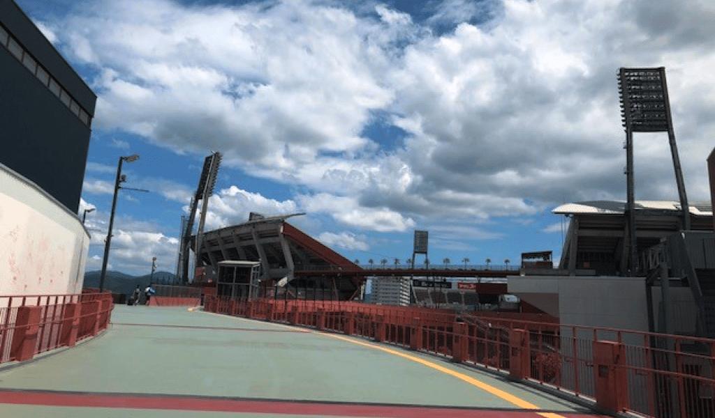 広島カープの内野自由席の特徴